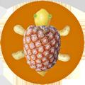 Dessous de plat - Motif tortue - Décovu